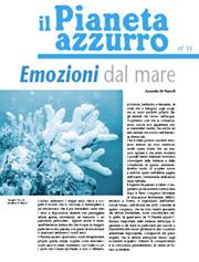Numero 11 – Febbraio 2006