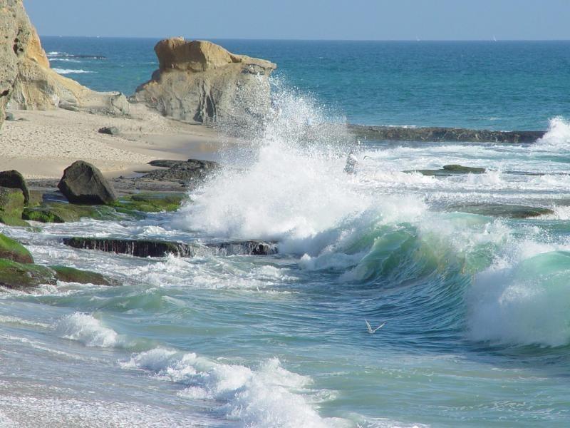 EDEN 2010: Turismo acquatico in prima linea!