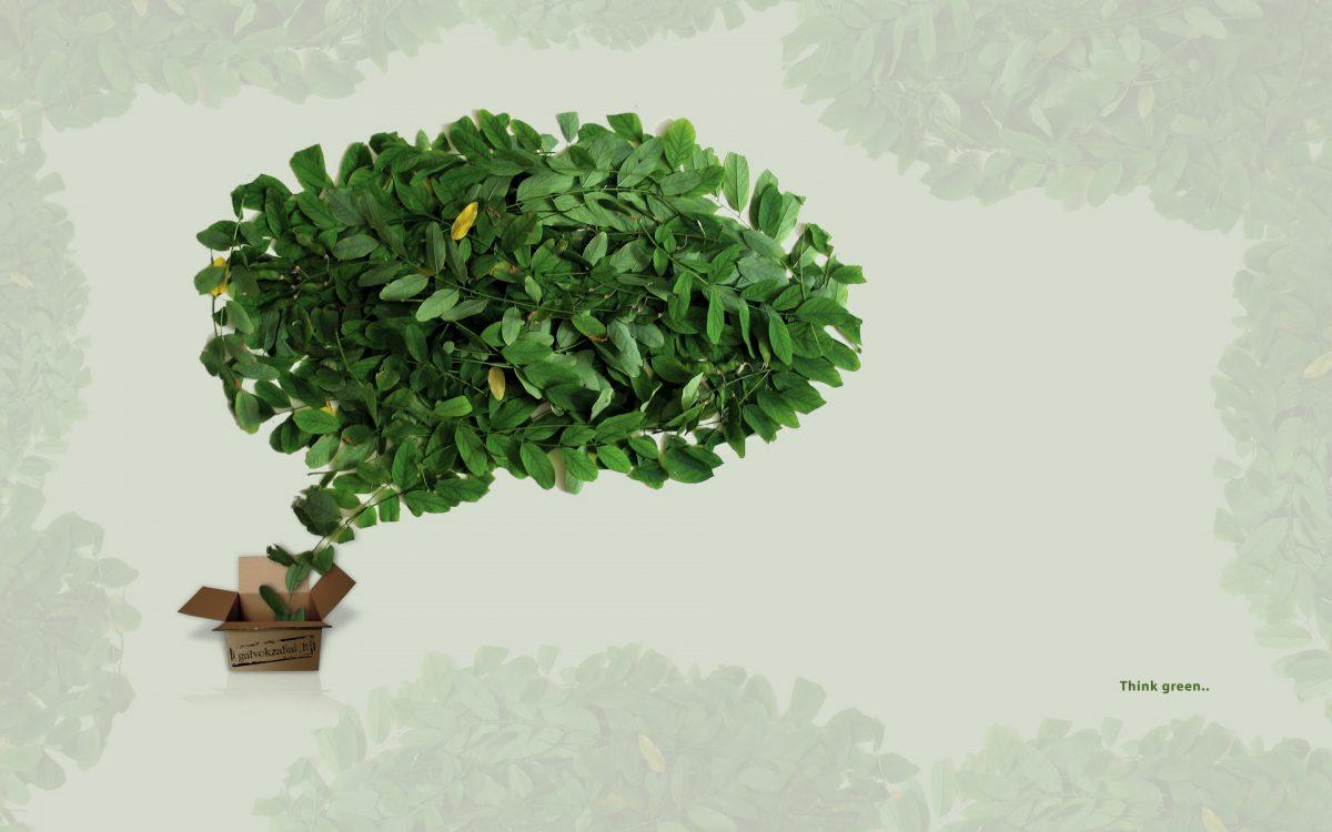 Rappresentazioni sociali e green economy