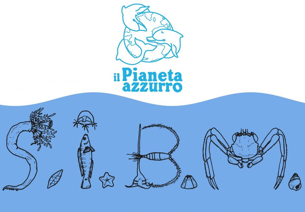 """Premio per tesi di laurea in Biologia marina """"il Pianeta azzurro"""", la scadenza il 31 ottobre"""