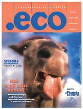 Numero 2 Febbraio 2004