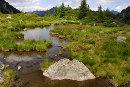 Imparare la natura nell'Oasi WWF di Valtrigona