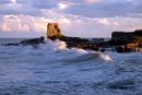 Whisky scozzese dalle onde del mare