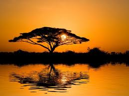Estrarre acqua con l'energia solare