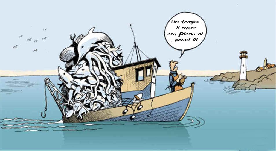 Giornata mondiale della pesca